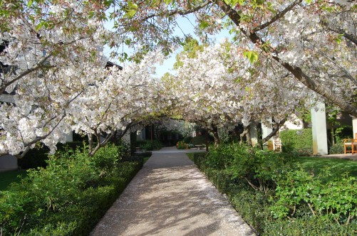 Yountville, California Where To Stay