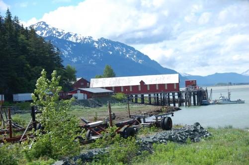 Alaskan Hikes Gorgoues Views In Chilkat State Park