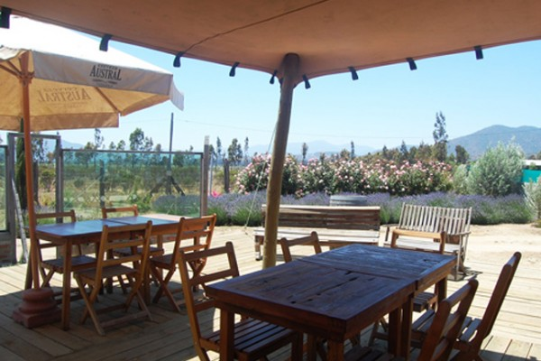 Casablanca Chile's Casa Botha Art Cafe