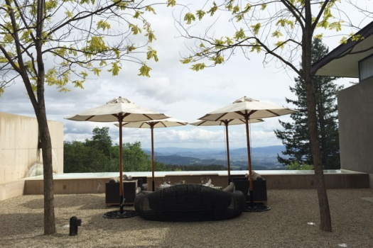 Napa Valley's Cade Winery With Fantastic Wines & Views That You'll Never Want To Leave