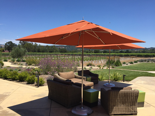Patz Hall Winery