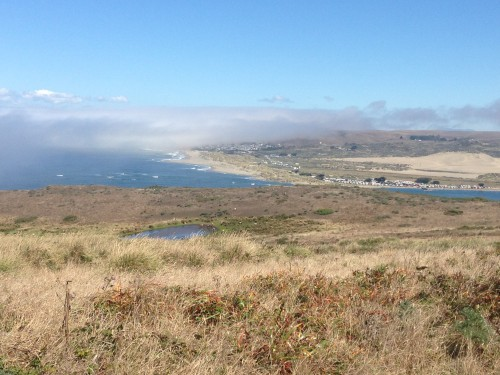 Top 10 San Francisco Hikes & Day Trips