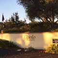 Winery Paso Robles
