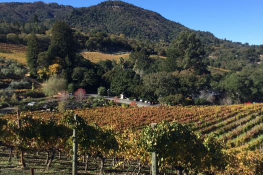 Benziger Family Winery A Bio Dynamic Sonoma Winery You Must Experience