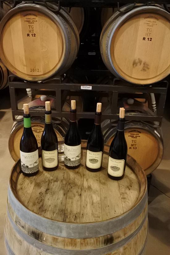 Bien-Nacido-Vineyard