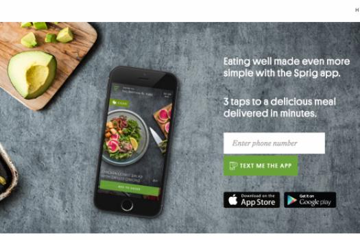 My Favorite Sprig Delivery Eats & Why You Should Order Sprig