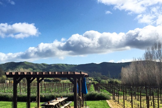 Melville Winery a Sta. Rita Hills Winery With Wines That I Adore