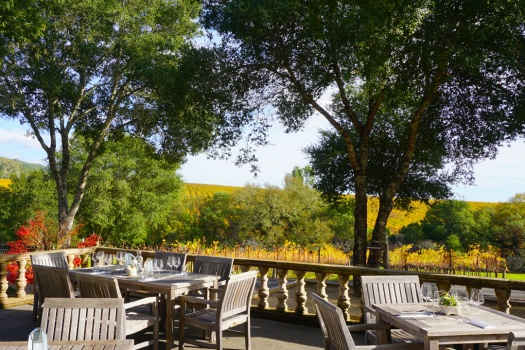Reeve Wines a NEW Healdsburg Winery & Estate To Know